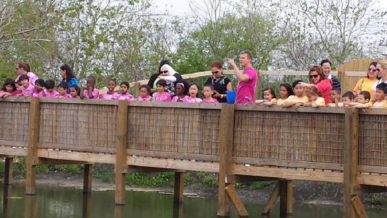 Houston Area School Field Trips Crocodile Encounter